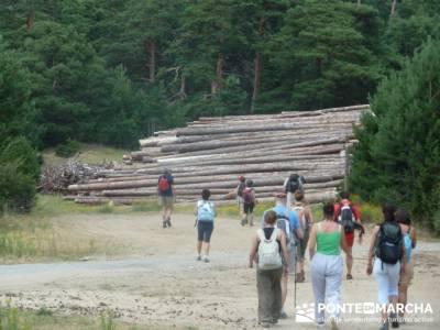 Andando entre el bosque - Club social y senderismo social; viajes de autor; gr 48